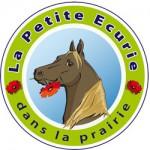 lla petite écurie dans la prairie Lauzach spectacle équestre chapiteaux La Stroga Location de Chapiteaux, Traiteur, Bretagne